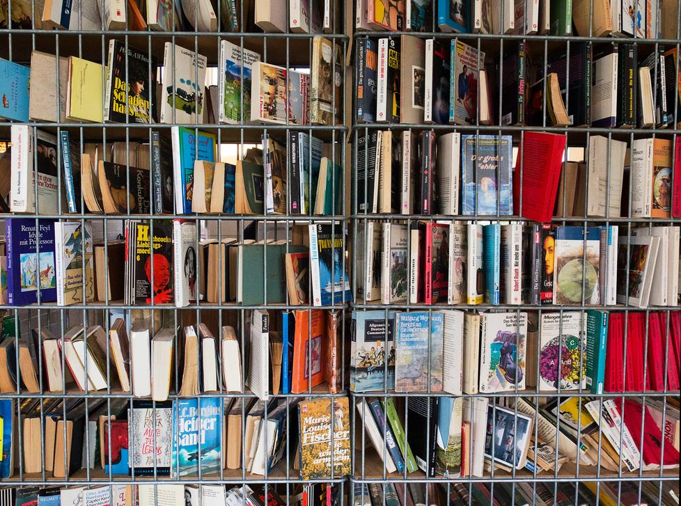 'elise's library', 2016 80/106 archival pigment print 4000$+vat edition 5/5 +2AP sold out