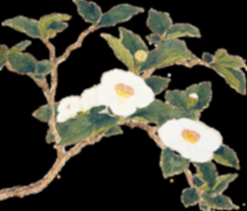 娑羅雙樹,娑羅雙樹花,有一天,禪