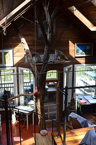 Pete's Tree