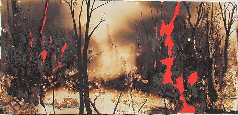Peter Kephart's Fire Forest