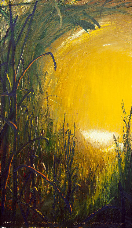 Awakening Deep in the Grass