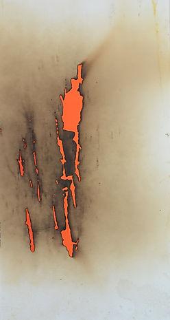 Minimal Colored Art Gallery