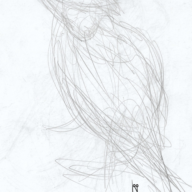 Automatische Zeichnung (51).jpg