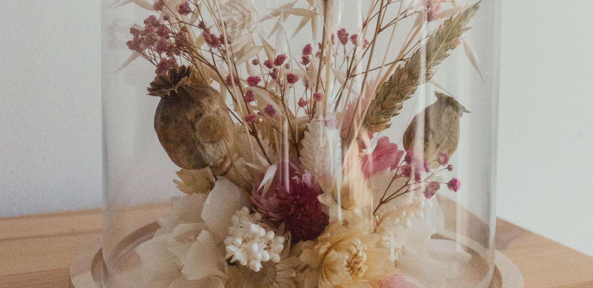 Cúpula de flor seca L