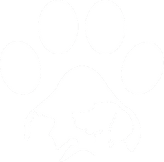 Logo Vector in white.png