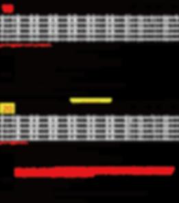 YBK-M spec 税抜き19-20SR.png