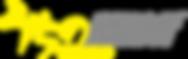 ushino mesh logo.png