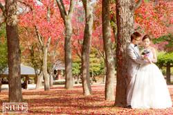 Japan Pre-wedding 048