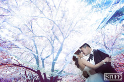 Qingtao Pre-wedding 016