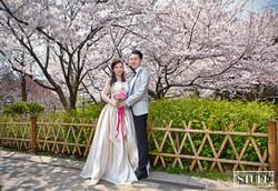 Qingtao Pre-wedding 014