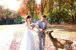 Japan Pre-wedding 055