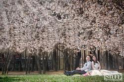 Qingtao Pre-wedding 001