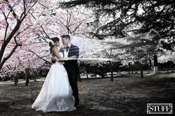 Qingtao Pre-wedding 017