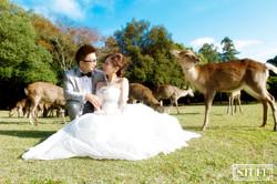 Japan Pre-wedding 078