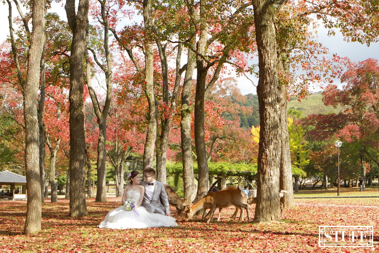 Japan Pre-wedding 053