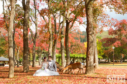 Japan Pre-wedding 053