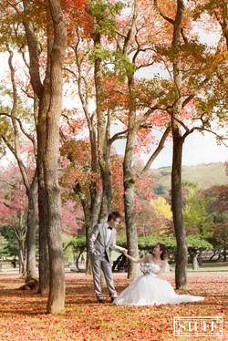 Japan Pre-wedding 052