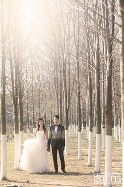 Qingtao Pre-wedding 066
