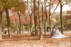 Japan Pre-wedding 051