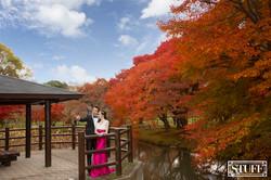 Japan Pre-wedding 012