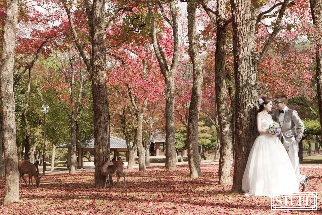 Japan Pre-wedding 047