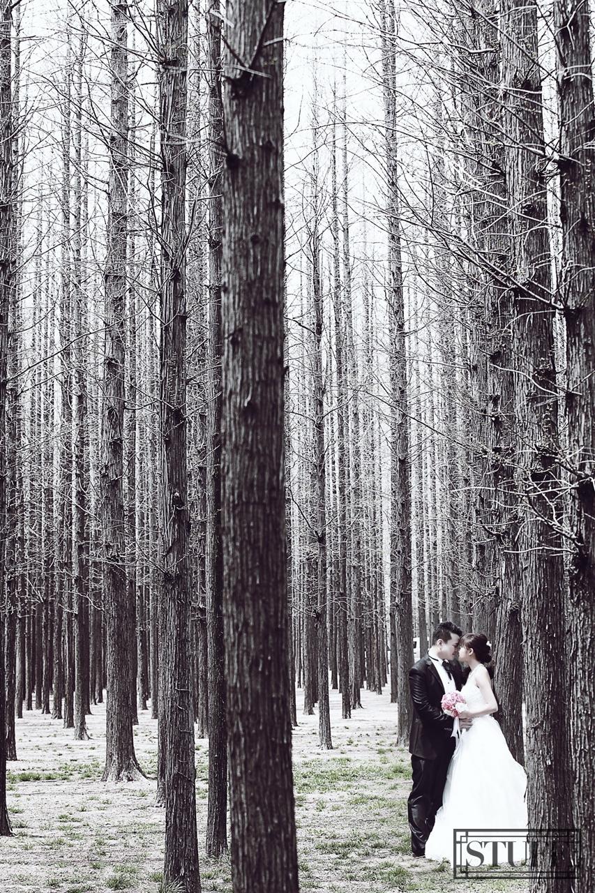 Qingtao Pre-wedding 052