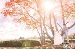 Japan Pre-wedding 073