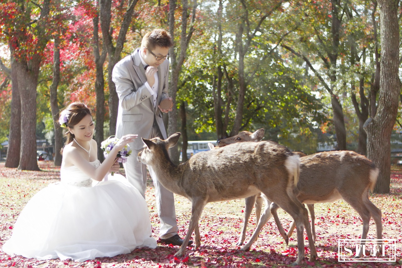 Japan Pre-wedding 056