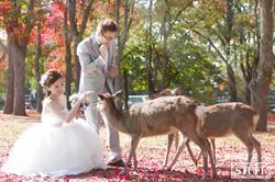 Japan Pre-wedding 056