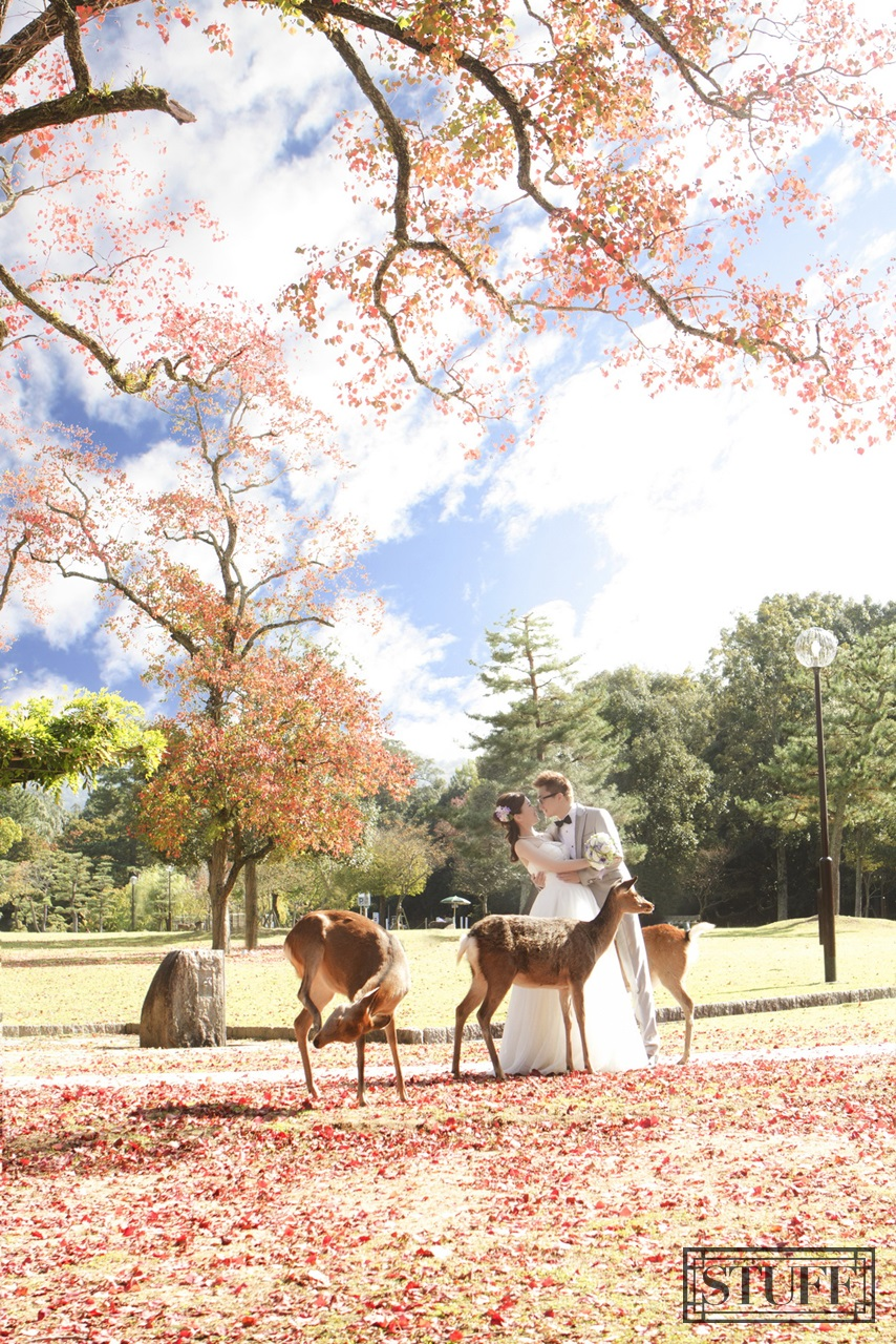 Japan Pre-wedding 059