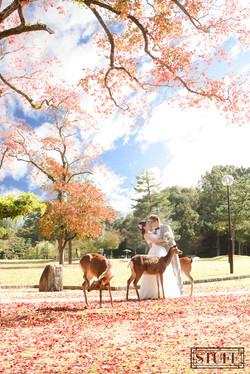 Japan Pre-wedding 059