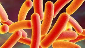 Kompaskolen: Nytt introkurs i Legionellakontroll