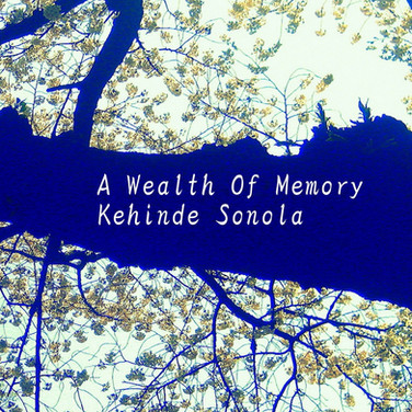 A Wealth Of Memory