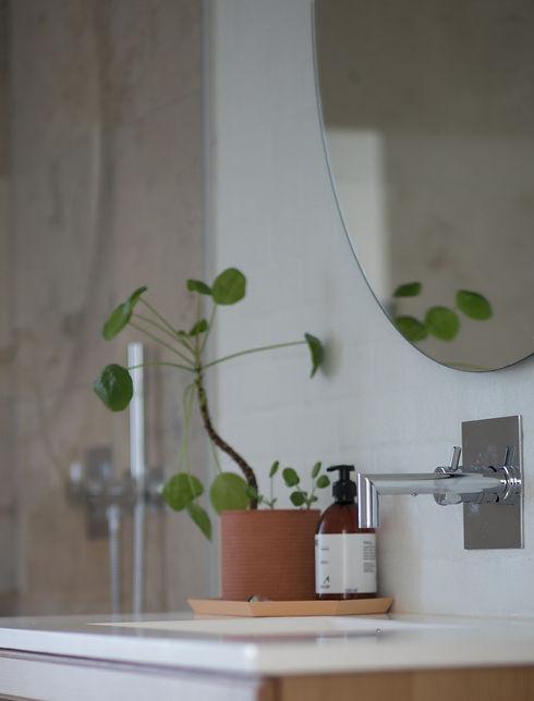 bathroom-contemporary-indoors-1358901_edited_edited.jpg