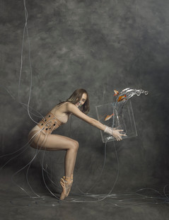Equilibrium Ritual 06 พิธีกรรมดุลยภาพ ๐๖