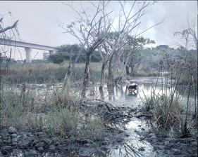 Daydream @wetland Pattanakarn, Bangkok 2004