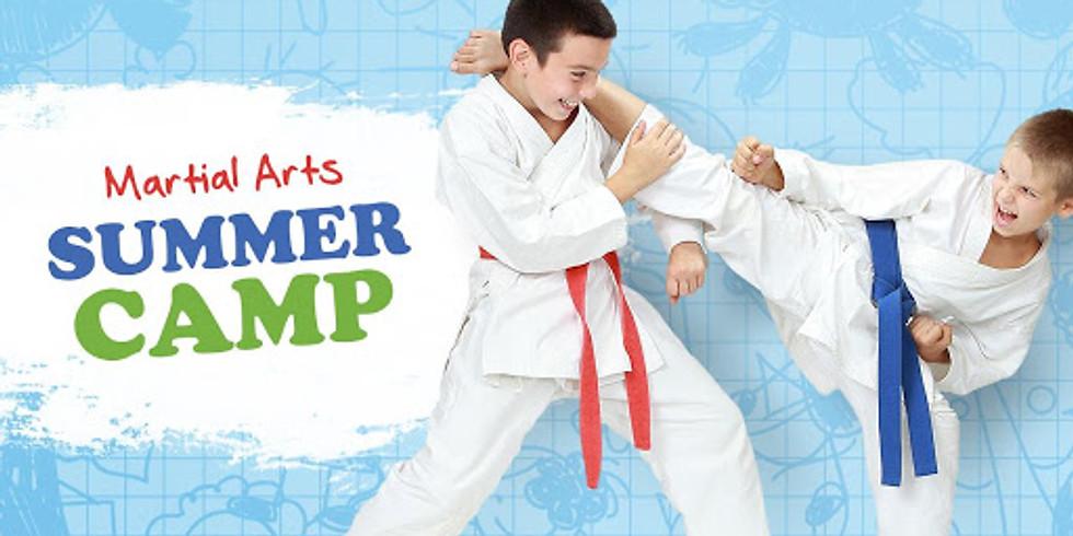 Light City Martial Arts Summer Camps