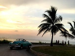 cars i solnedgang.jpg