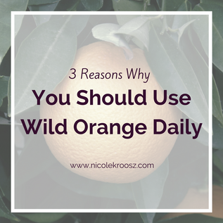3 Reasons Why You Should Use Wild Orange Daily