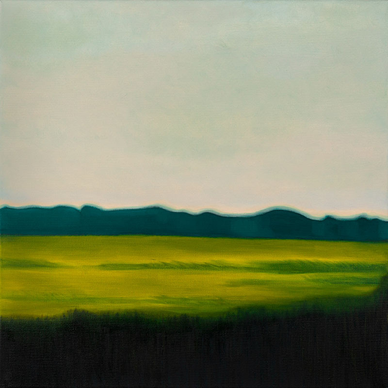 """""""Green Fields"""" oil on canvas 20 x 20 inches"""