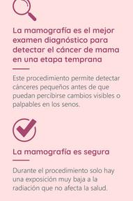 Mamografía 03 (historia)
