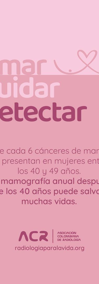 Amar Cuidar Detectar (historia)