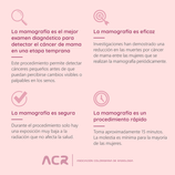 Mamografía 02