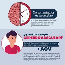 ACV_Infografía