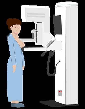 Mamografía_01.png