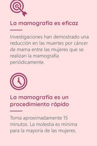 Mamografía 02 (historia)