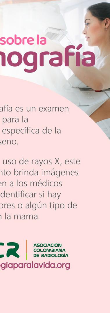 Mamografía 01 (historia)