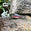 Thumbnail: Kingfisher