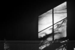 2016, 8 photographs, ed of 3