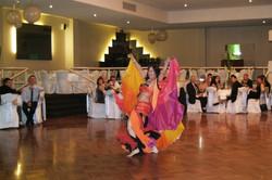 Noosa wedding reception belly dancer